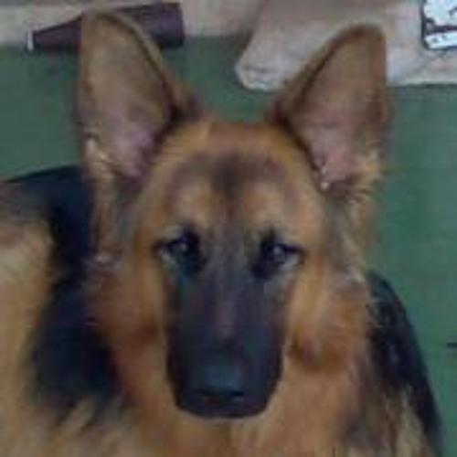 Christopher Davidson 8's avatar