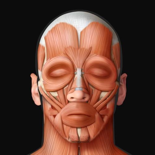 Hoz30raph's avatar