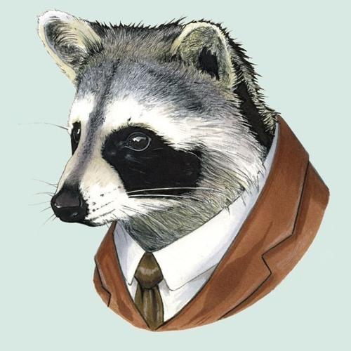 raccoon x giraffe's avatar