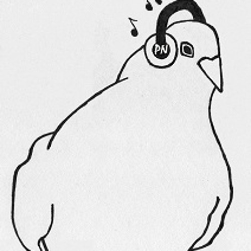 The Pigeon Note's avatar
