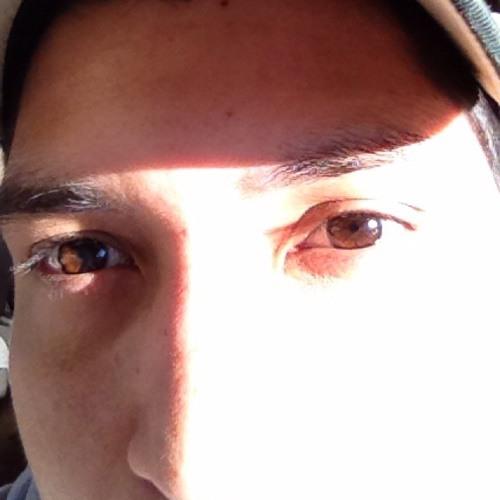 C-Lo1390's avatar