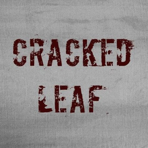 Cracked Leaf's avatar