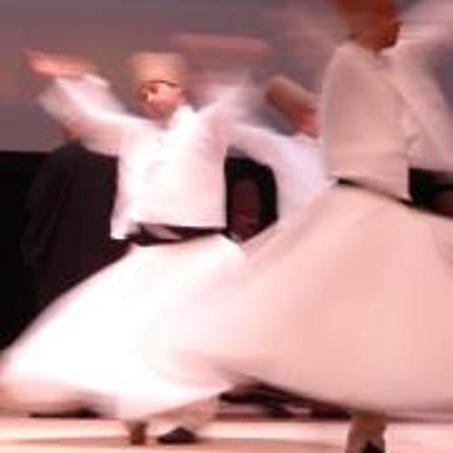 Raza Ul Mustafa 1's avatar