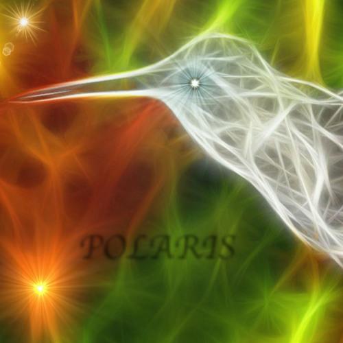 POLARiS United's avatar