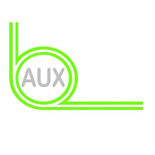 Auxiliary1's avatar