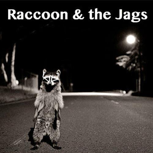 Raccoon & the Jags's avatar