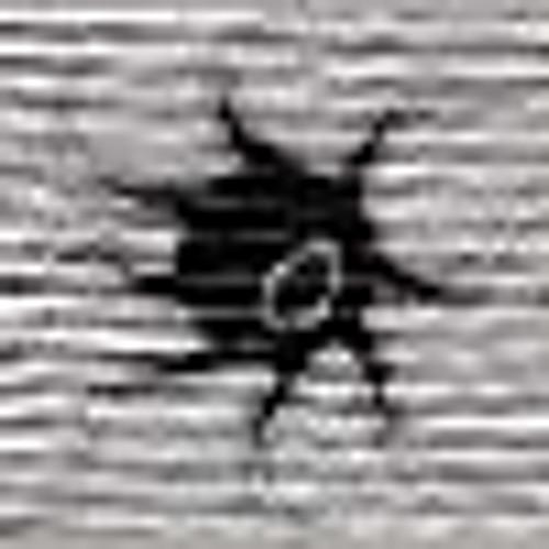 Deusparadoxi's avatar