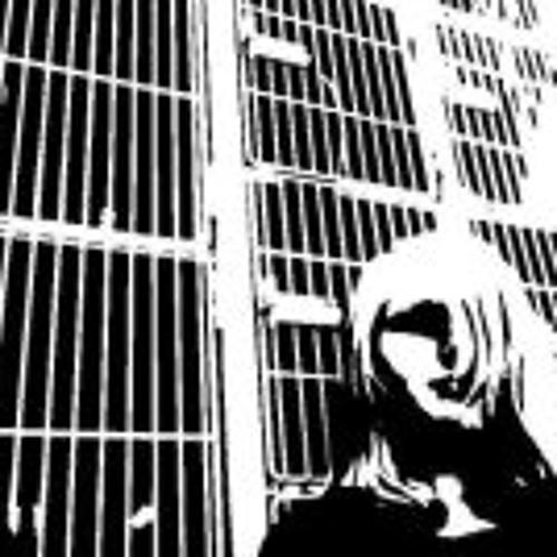 Dana Metz's avatar