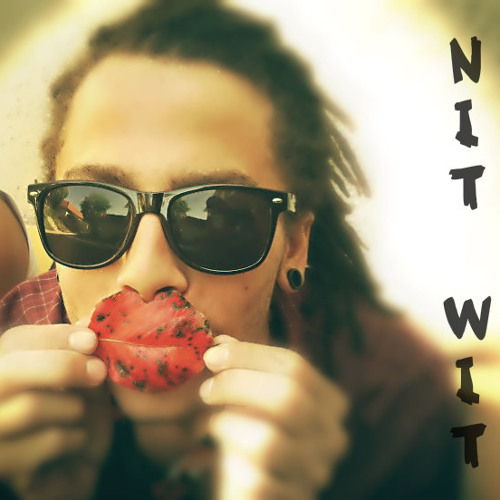 Nit-Wit's avatar