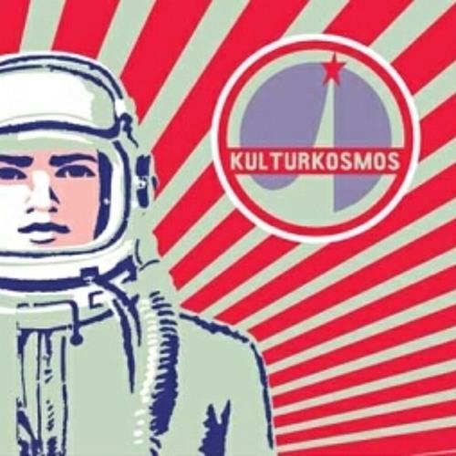 Nils Cuiner's avatar