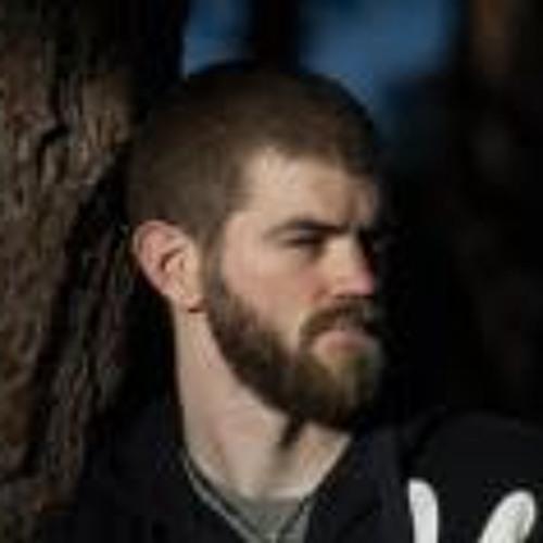 Didrik Breitholtz's avatar