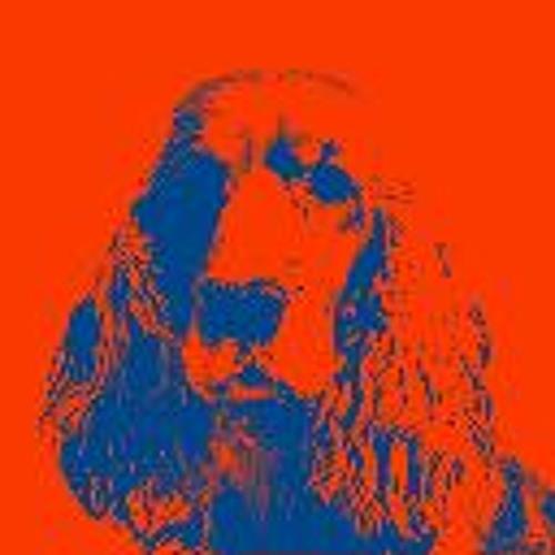 has fidanken(has dj)'s avatar