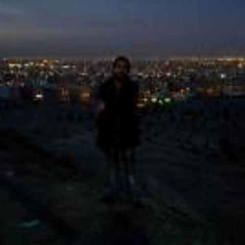 Hamid Nazari 1's avatar