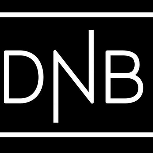 Venture DnB's avatar
