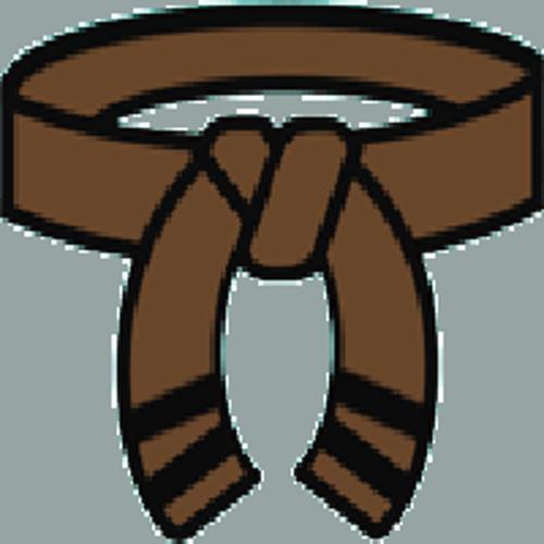 the brown belt's avatar