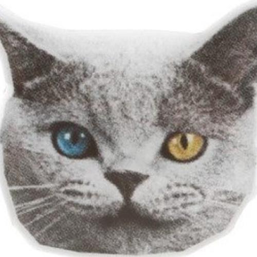 niggachickenkoolaid's avatar