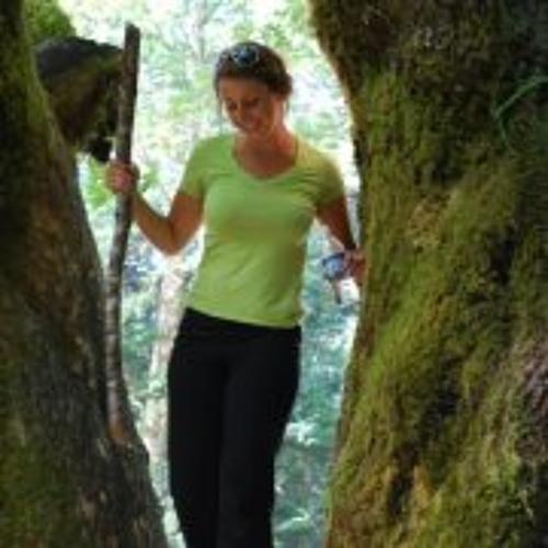 Allison Shelters's avatar