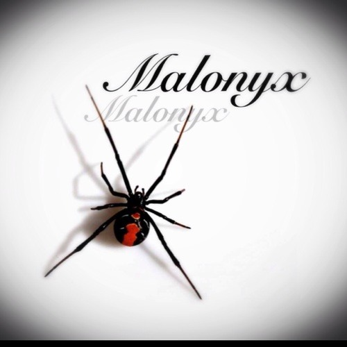Malonyx's avatar
