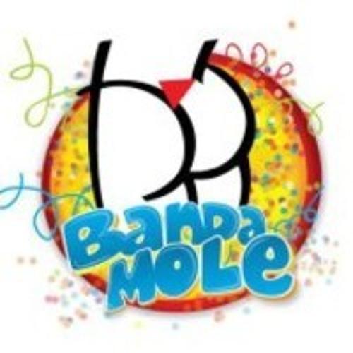 bandamole's avatar