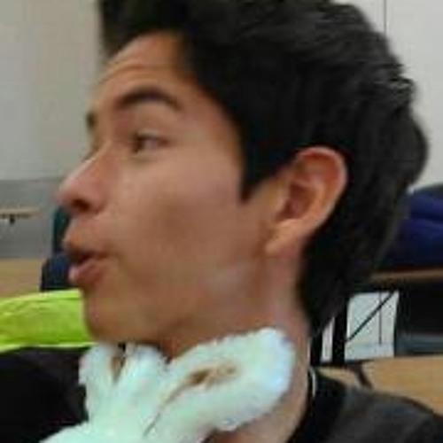 Aaron Ramirez 15's avatar