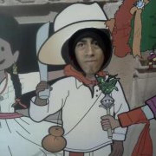 Krls Ska Silvestre's avatar