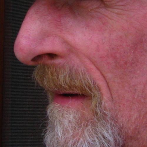 Jechco Studios's avatar