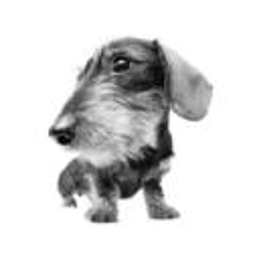 locelo's avatar