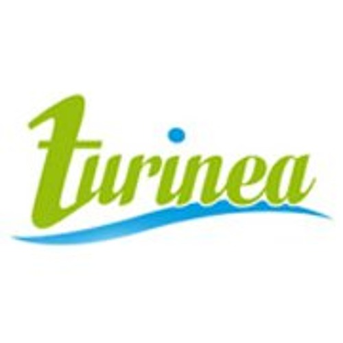 Turinea's avatar