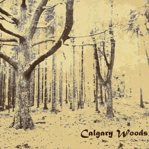 CalgaryWoods's avatar