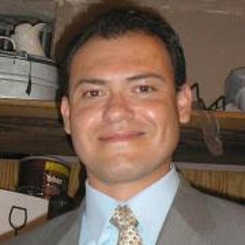 Luis Frettlöhr's avatar