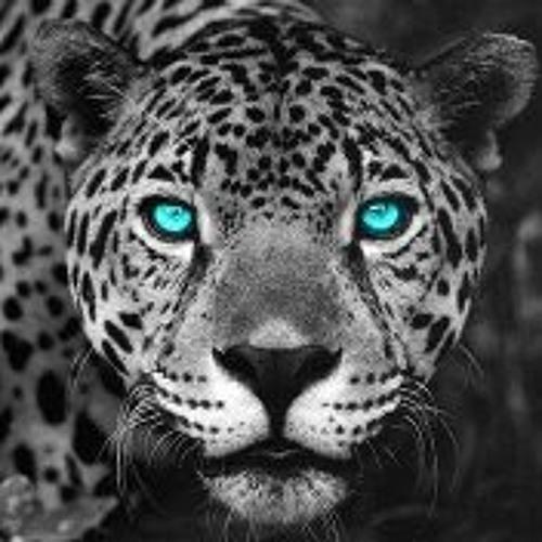 DUVAL32's avatar
