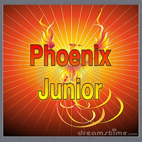 phoenix junior's avatar