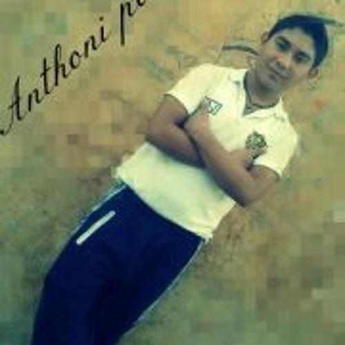 Anthoni Parra Torres's avatar