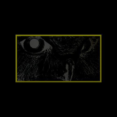Lossless Owl's avatar