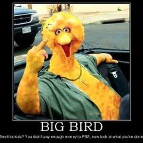 Big Bird 78's avatar