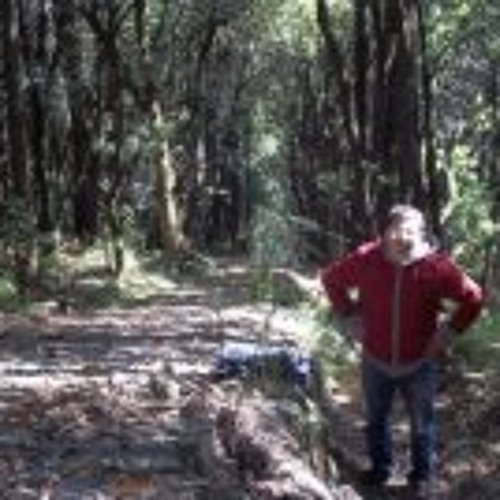 José Manuel Álvarez 10's avatar