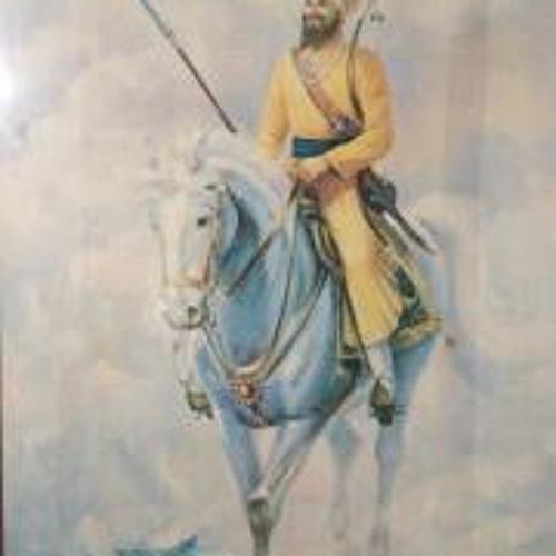 Veerin Singh's avatar