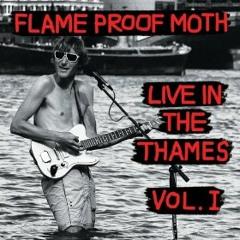 Flame Proof Moth