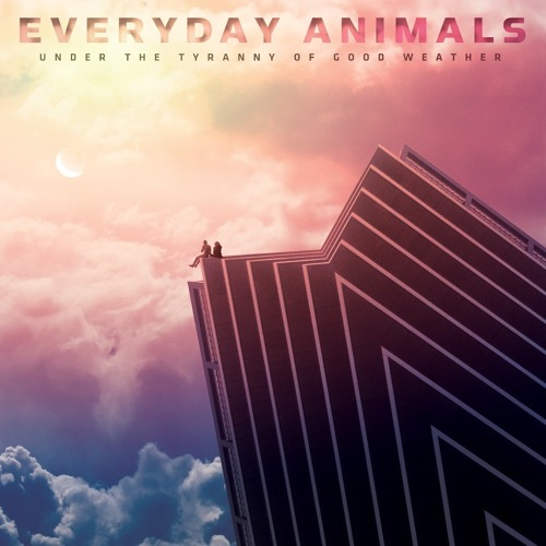 Everyday Animals's avatar