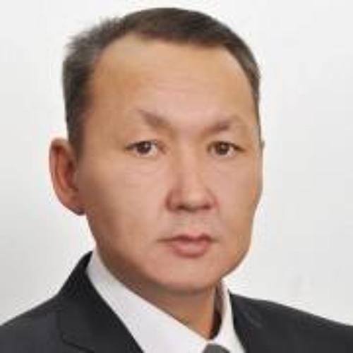 Vasiliy Krivoshapkin's avatar