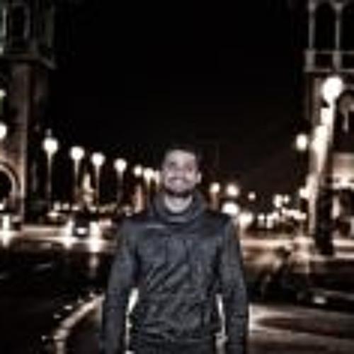 Ahmed Hegazy 11's avatar