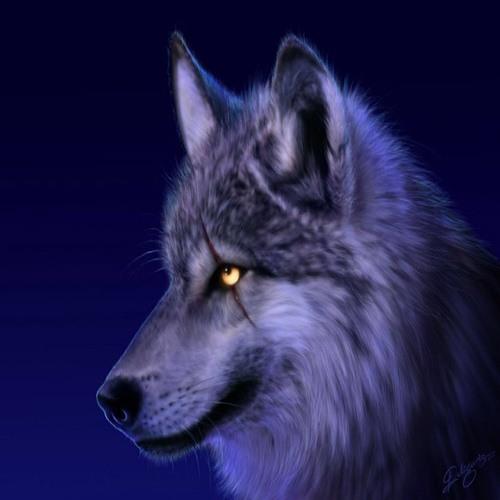 driftmanic's avatar