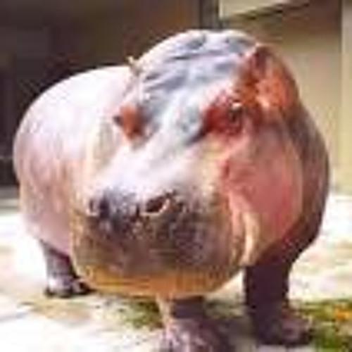 pikoriku's avatar