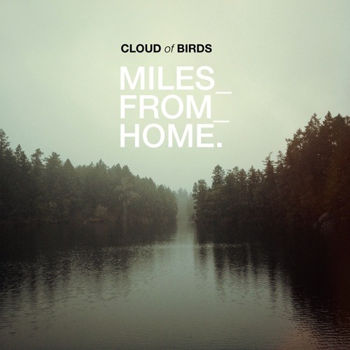 cloud of birds's avatar