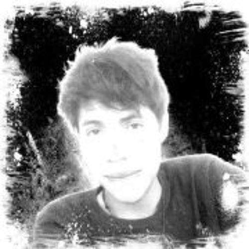 Paniolik van Rolk's avatar