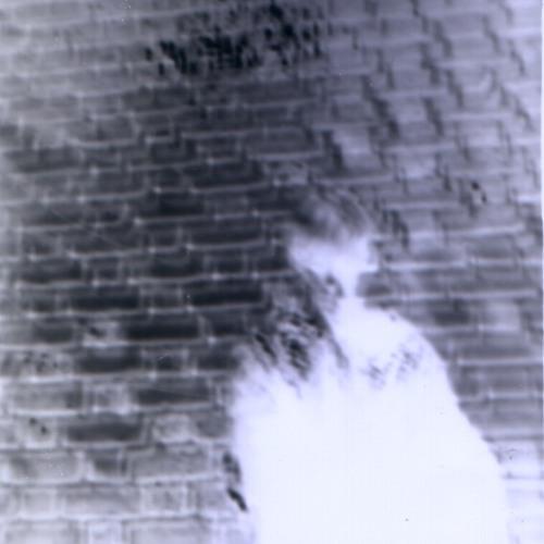 b. vilhause's avatar
