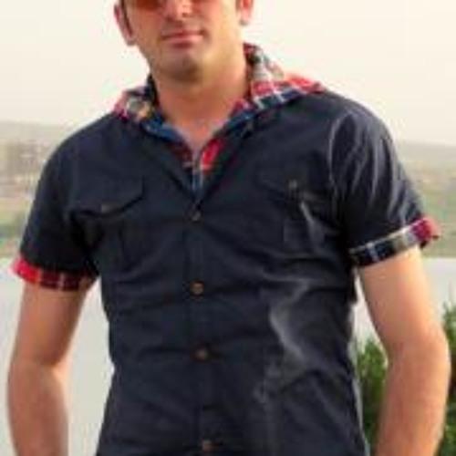 Farzin Rahmatdoust's avatar