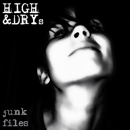 HIGH&DRYs (junk files)'s avatar