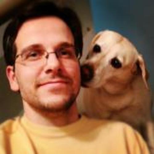 Flávio Steffens De Castro's avatar