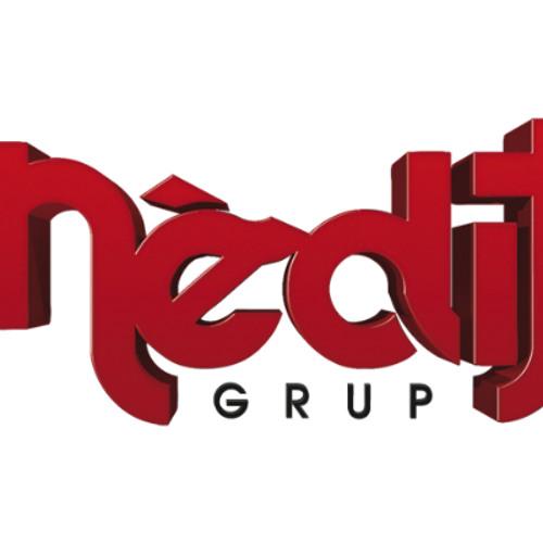 Grup Inedit's avatar